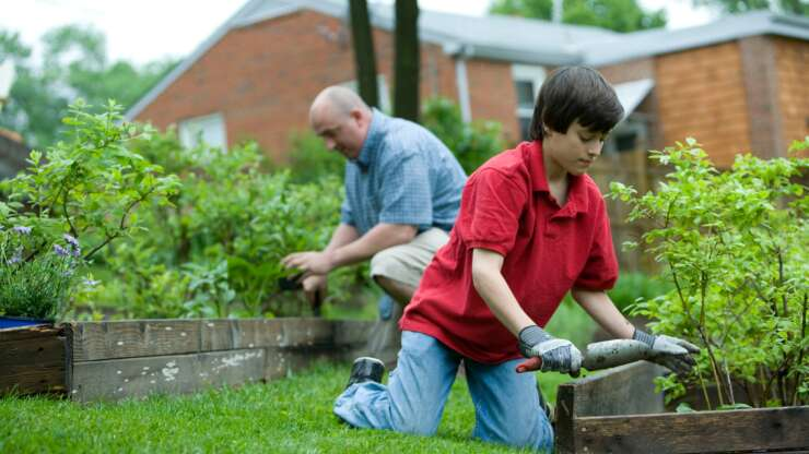 PLANNING FOR YOUR SPRING GARDENING